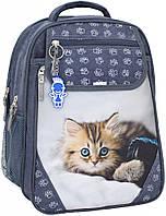 Рюкзак школьный Bagland Отличник 20 л. Серый (котенок светлый) (0058070)