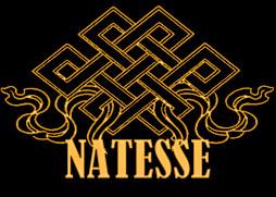 Меховой Салон-Ателье «Natesse»