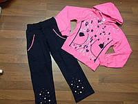 Детская одежда оптом Костюм спортивный начес для девочек оптом р.116-152см, фото 1