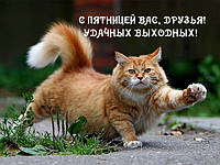А СЕГОДНЯ ПЯТНИЦА !!!
