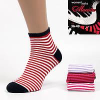 Женские короткие носки Petya 1702. В упаковке 12 пар