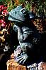 Сидящая лягушка, фото 2