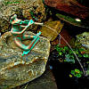 Лягушка играющая на флейте , фото 2