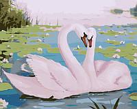 Картина по номерам без коробки Прекрасные лебеди (BK-GX7228) 40 х 50 см