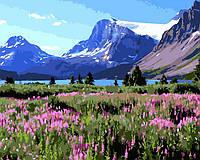 Картина раскраска по номерам без коробки Цветущая долина (BK-GX8585) 40 х 50 см
