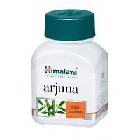 """Арджуна"" в капсулах от компании ""Гималаи"", 60 капсул (Arjuna Himalaya) Сердечный тоник"