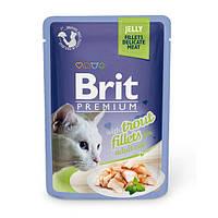 Brit Premium Trout fillets in Jelly паучи для кошек с кусочками филе форели в желе, 85г