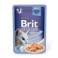 Brit Premium Salmon fillets in Jelly паучи для кошек с кусочками филе лосося в желе, 85г