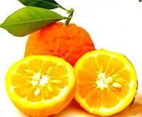 Эфирное масло Апельсин горький 10 мл