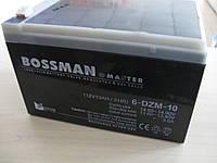 Тяговый аккумулятор Bossman Master 6DZM10 - GEL 12V 10Ah