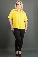 Рубашка женская большого размера