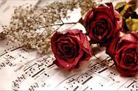 Алмазная вышивка Розы и ноты 50 х 30 см (арт. FS588)
