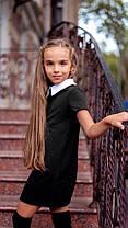 Платье в школу с коротким рукавом и белым воротником., фото 3