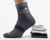 Купить мужские носки adidas. Турция. В упаковке 12 пар, фото 1