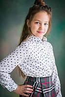 Блуза для девочки Горох, белая (р.128,134,146)