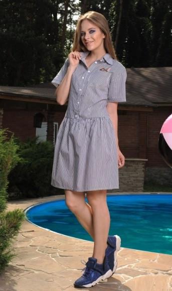 Сукня сорочка в біло-синю смужку