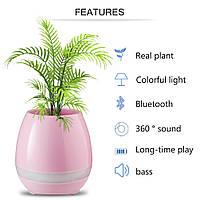 Bluetooth колонка Цветочный горшок, фото 1