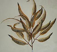 """Ветка осенних листьев """"перья"""", фото 1"""