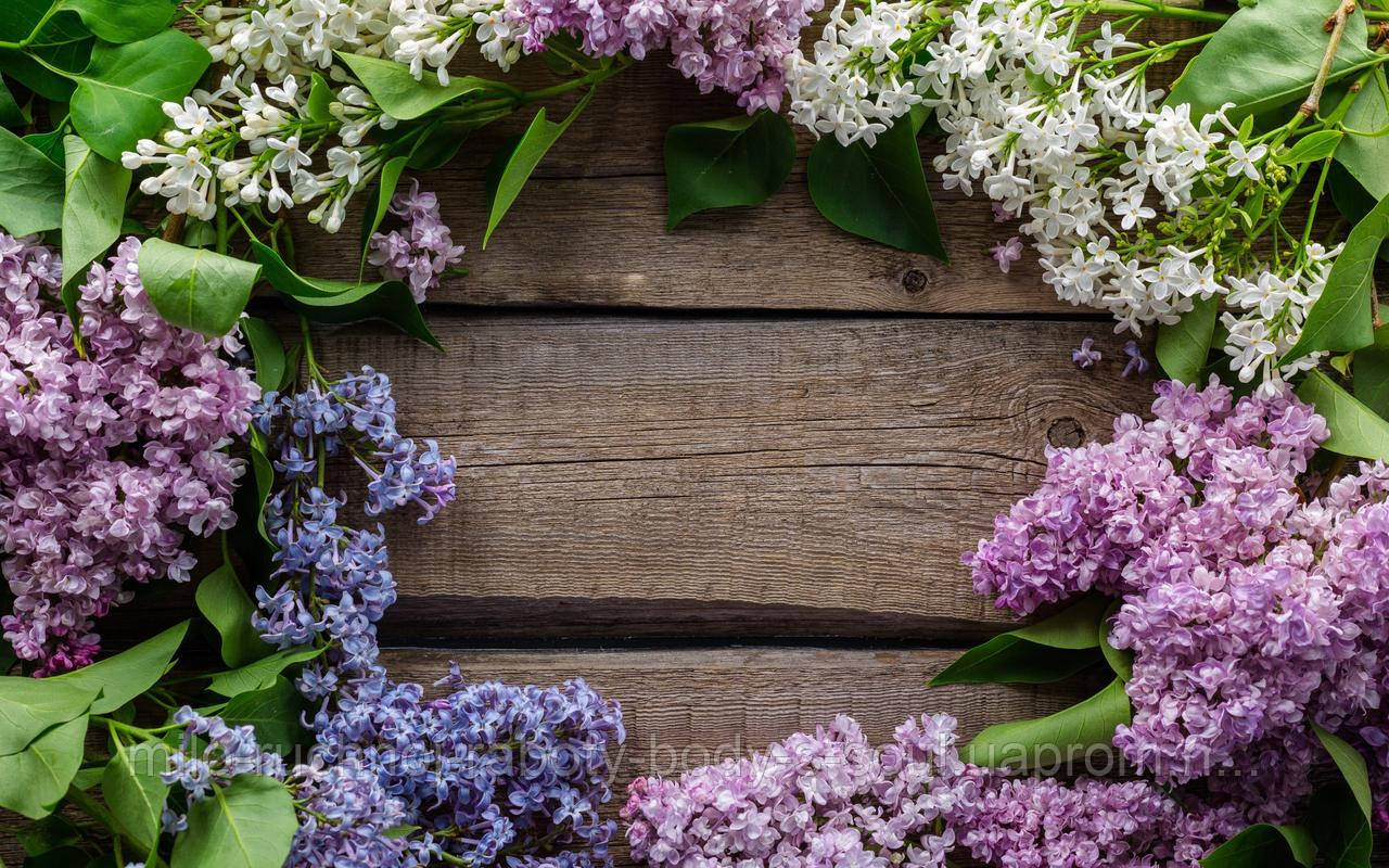 Фотофон виниловый, цветы сирени