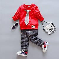 Комплект дитячий штани і реглан для хлопчика 80