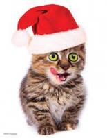 Красочные пазлы 'Праздничный котенок, 100 элементов