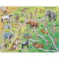 Пазлы для маленьких детей Larsen Теория эволюции