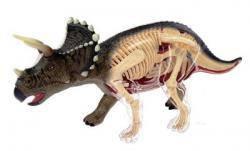 Анатомическая модель Динозавр Трицератопс 4D Master 26093