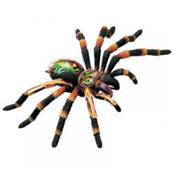 Анатомическая модель  Паук тарантул, 4D Master 26112 - Интернет-магазин Купи: термомозаика, пазлы, конструктор, технику в Киеве