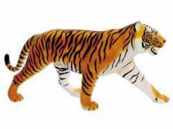 Анатомическая модель  Тигр, 4D Master 26105