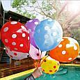 """Повітряні кульки """"Веселий Горошок"""" асорті 30 див., фото 2"""