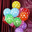 """Повітряні кульки """"Веселий Горошок"""" асорті 30 див., фото 4"""