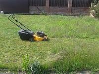 Стрижка трави. Стригти траву на газоні. Постригти траву. Послуги з покосу трави.