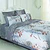 Постельное белье ТЕП двухспальное Жанет