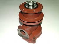Насос водяной (помпа) МТЗ-80 (240-1307010А-02) (корпус и шкив-чугун) подшипник 6304