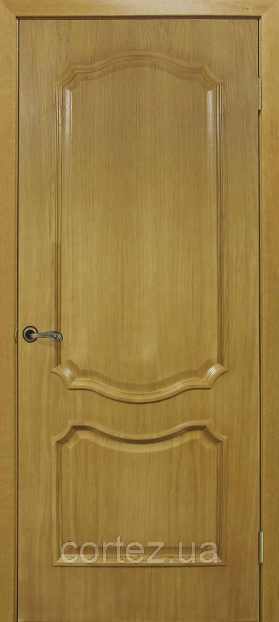 Межкомнатные двери пвх Кармен ПГ ДНТ