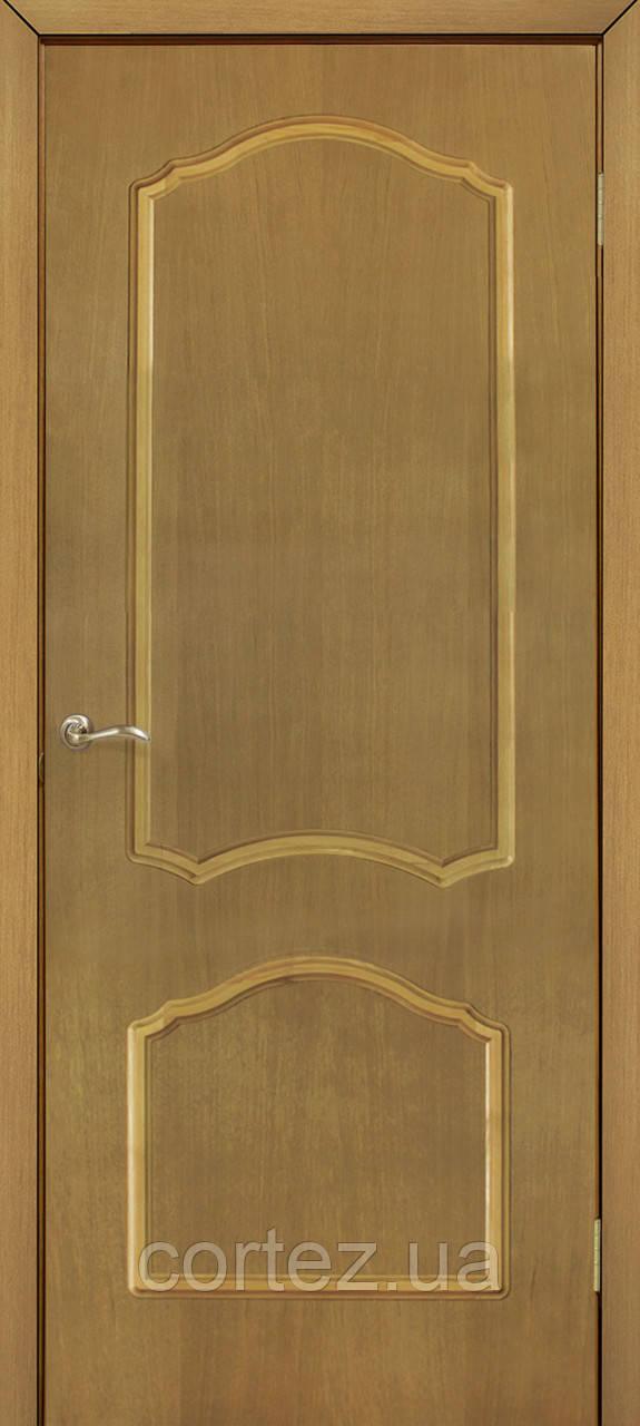 Межкомнатные двери пвх Каролина ПГ ДНТ
