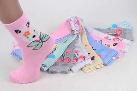 Детские носки на девочку р.29-32 (D3102/29-32) | 12 пар, фото 2