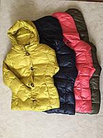 Куртки для девочекна флисе GLO-STORY 134/140-170 р.р.