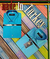 Тениска школьная для мальчиков, хлопок, Турция, размеры 116-166 см