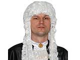 Парик Судьи/ Лорда кудрявый белый платиновый , фото 3