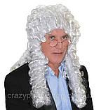 Парик Судьи/ Лорда кудрявый белый платиновый , фото 5