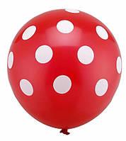 Латексный воздушный шар Пастель красный в белый горох круговая печать. 12 дюймов / 30см.