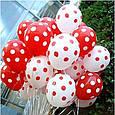 """Повітряна кулька """"Божа Корівка""""пастель червоний в білий горох кругова друк. 12 дюймів / 30см., фото 4"""
