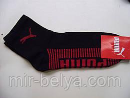 Спортивные носки  PUMA мужские короткие