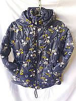 Детская куртка  на девочку осень/весна ( р.36/44 ) купить оптом