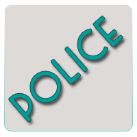 Электрошокеры (police)