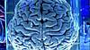 Мозг актив капсулы № 60, фото 2