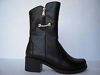 Женские ботинки из натуральной кожи на устойчивом каблуке декорирован фурнитурой и молнией