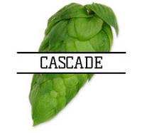 Снова в продаже хмель Cascade (US) a-6%