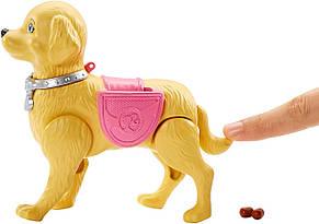 Кукла Барби Прогулка с щенком Barbie Girls Walk and Potty Pup with Blonde Doll, фото 3